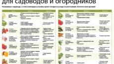 Календарь садовода и огородника на июнь