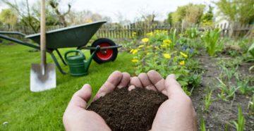Как восстановить почву