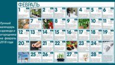 Календарь садовода и огородника на февраль