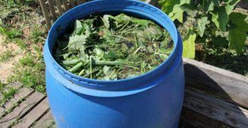 Приготовление травяного настоя для подкормки овощей