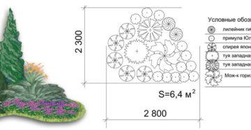 Миксбордеры из хвойных и многолетних растений: схемы и примеры композиций