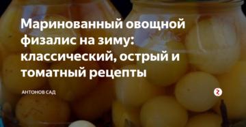 Маринованный овощной физалис на зиму: классический, острый и томатный рецепты