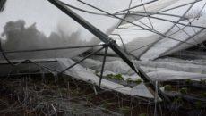 Что защитит теплицу от тяжести снега