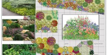 Миксбордер: разнообразие видов, растений и правила оформления
